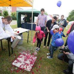 Piknik z wyobraźnią PPNT, photo reportage; reportaż fotograficzny